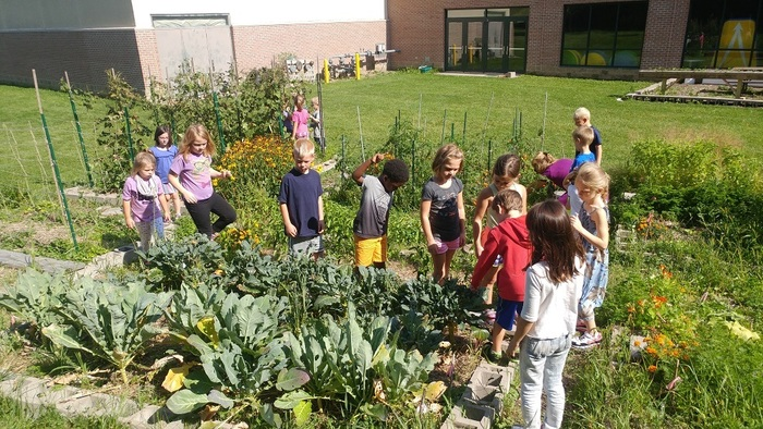 First graders in the garden