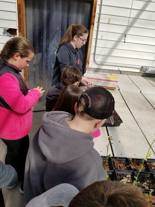 4th grade to greenhouse 3